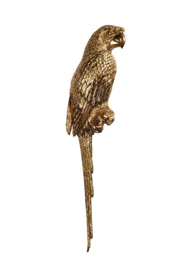 Perroquet têtu - left