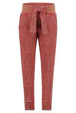 Noppies G Slim fit sweat pants Culpeper aop, Mineral Red