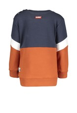 B-Nosy Baby boys cut and sew sweater with frotté artwork, Cognac
