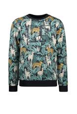 Like Flo Flo boys sweater AO jungle print, Leaf