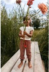 LOOXS Little Little harem pants, FLOWERPOWER