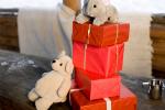 mooie dierendag cadeautjes
