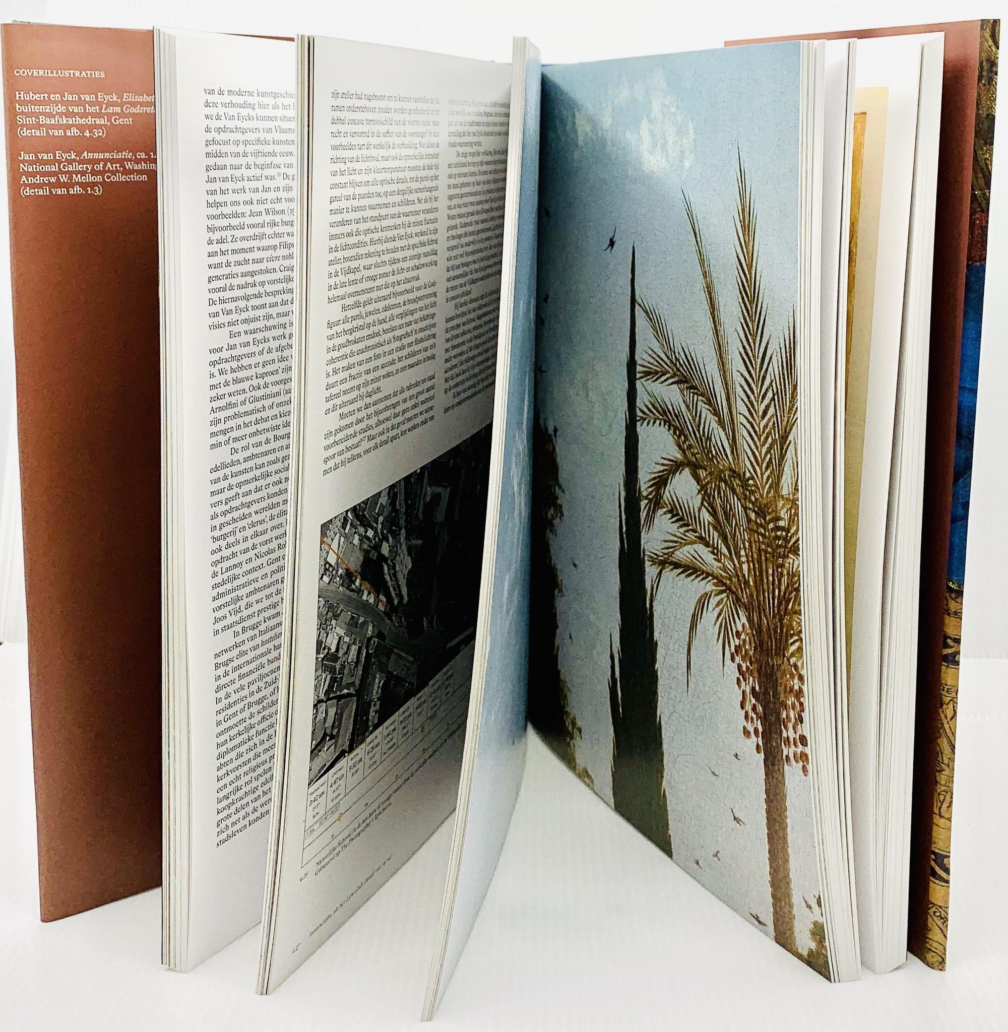 MSK Catalogus 'Van Eyck - Een optische revolutie' Frans  - MSK