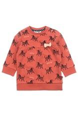 Feetje Sweater AOP - Zebra Brique