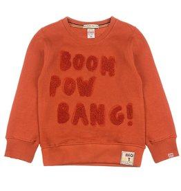 Sturdy Sweater Boom - Dino-mite