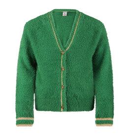 Retour Jeans Knitwear Yfke apple green
