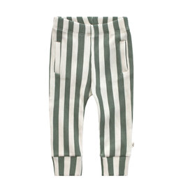 Your Wishes Bold Stripes | Fitted Pants Old Green
