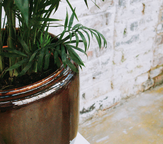 De perfecte pot voor je plant!