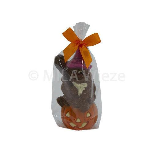 Heks op pompoen, ingekleurd 60 gr - 13 cm