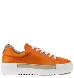 Roberto D'Angelo Gymp Faro velvet Oranje