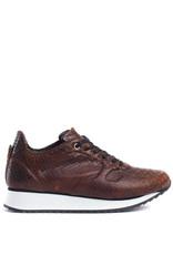 Fred de la Bretoniere Sneaker croco print  brown
