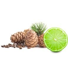 Body Wash 260ml Cuban Cedar & Lime