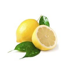 Citrus Fresh Beard Oil