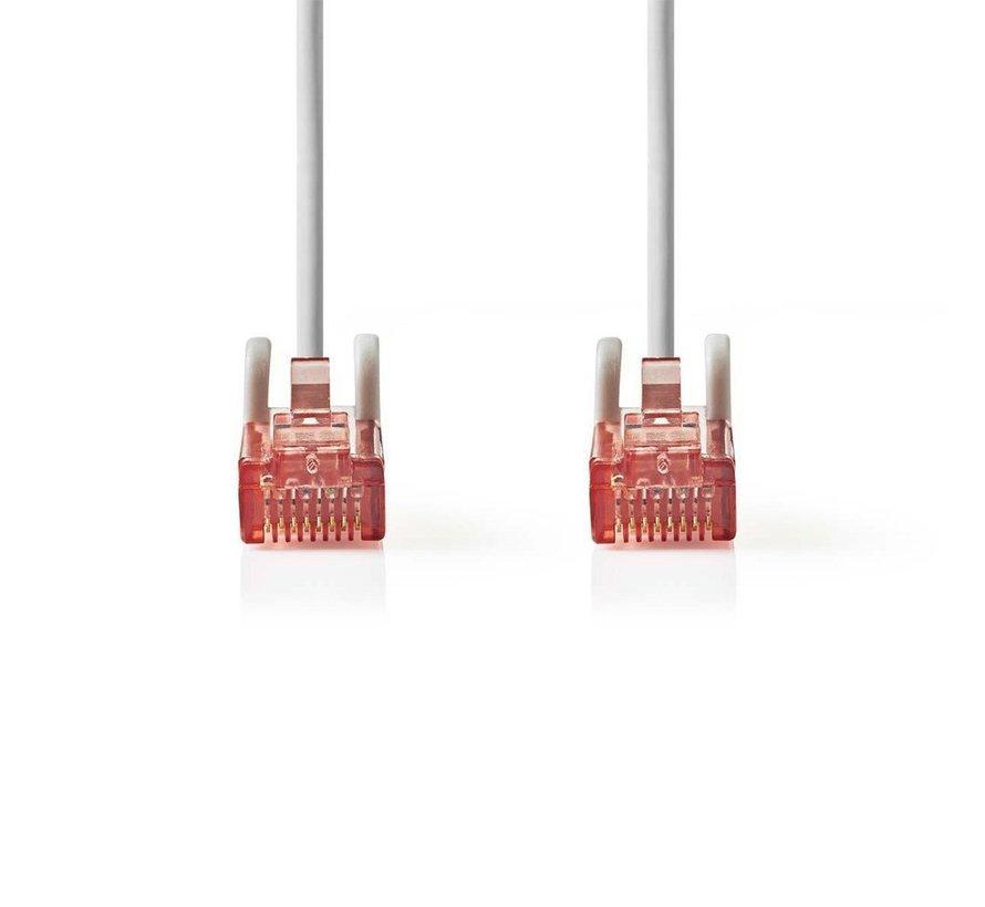 CAT6 UTP-Netwerkkabel/RJ45 1m Grijs
