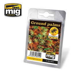 Ground Palms - A.MIG-8454