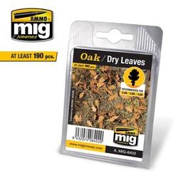 Oak - Dry Leaves - A.MIG-8402