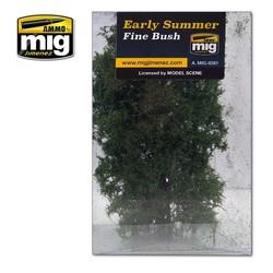 Fine Bush - Early Summer - A.MIG-8381