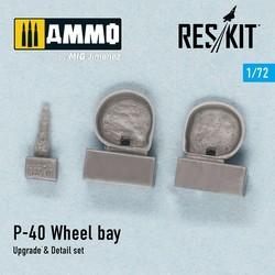 P-40 D ,E.F, K, M, N Wheel bay - Scale 1/72 - Reskit - RSU72-0002