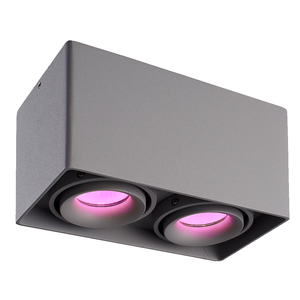 Homeylux Intelligenter WiFi LED Deckenanbaustrahler Esto Grau RGBWW 2 Lichter GU10 IP20 Kippbar