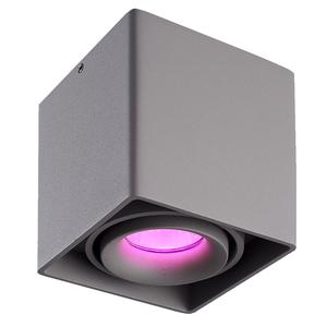 Homeylux Intelligenter WiFi LED Deckenanbaustrahler Esto Grau RGBWW GU10 IP20 Kippbar