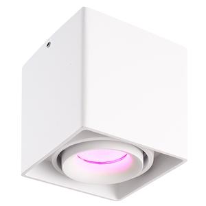 Homeylux Smart WiFi LED opbouw plafondspot Esto wit RGBWW GU10 IP20 kantelbaar