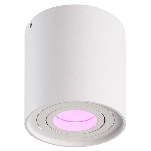 Homeylux Smart WiFi LED surface mounted ceiling spotlight Ray white RGBWW GU10 IP20 tiltable