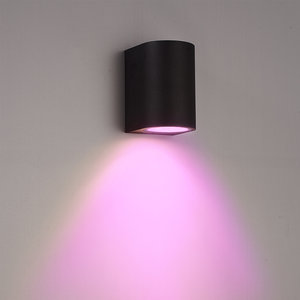 Homeylux Smart WiFi LED wall light Alvin black RGBWW GU10 IP44