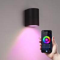 Smart WiFi LED wall light Alvin black RGBWW GU10 IP44