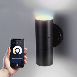Homeylux Smart WiFi LED Wall light Blenda WW-CW GU10 black IP44