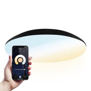 Homeylux LED Plafondlamp Smart WiFi + BLE 25W Lichtkleur instelbaar - 2600lm - IK10 - Ø38 cm - zwart - IP65