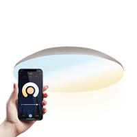 LED Ceiling lamp Smart WiFi + BLE 18W CCT - 1900lm - IK10 - Ø30 cm - Chrom - IP65