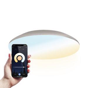 Homeylux LED Deckenleuchte Smart WiFi + BLE 18W einstellbare Lichtfarbe - 1900lm - IK10 - Ø30 cm - Chrom - IP65