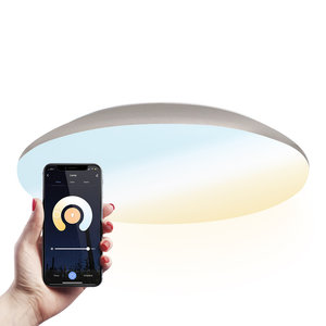 Homeylux LED Plafondlamp Smart WiFi + BLE 25W Lichtkleur instelbaar - 2600lm - IK10 - Ø38 cm - Chroom - IP65