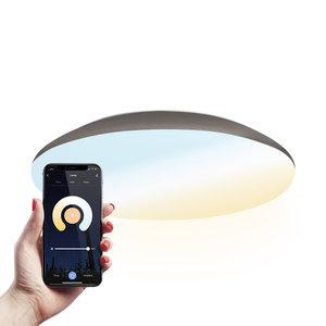 Homeylux LED Plafondlamp  Smart WiFi + BLE 18W Lichtkleur instelbaar - 1900lm - IK10 - Ø30 cm - RVS - IP65