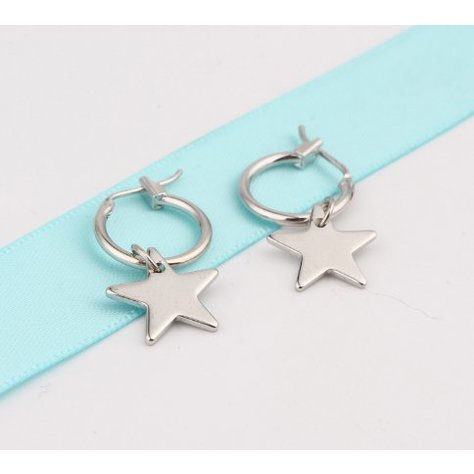 CIRCLE STAR EARRING IN SILVER