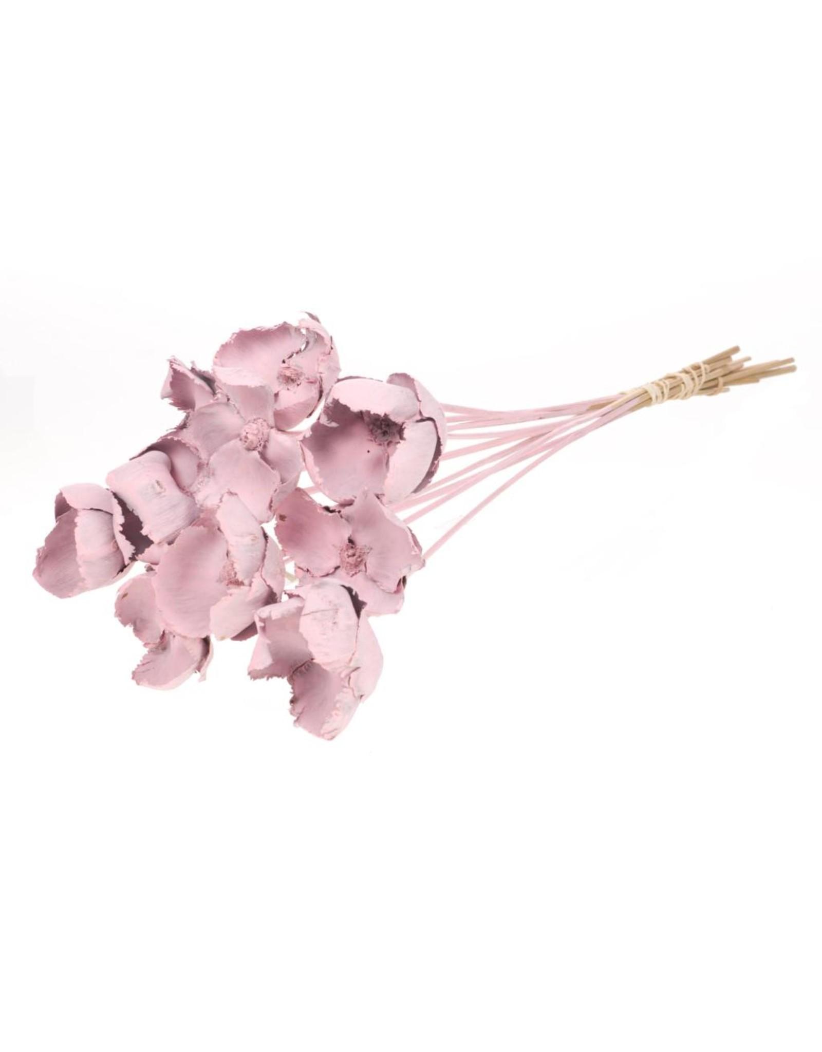 Palmcup o/s pink misty x 12