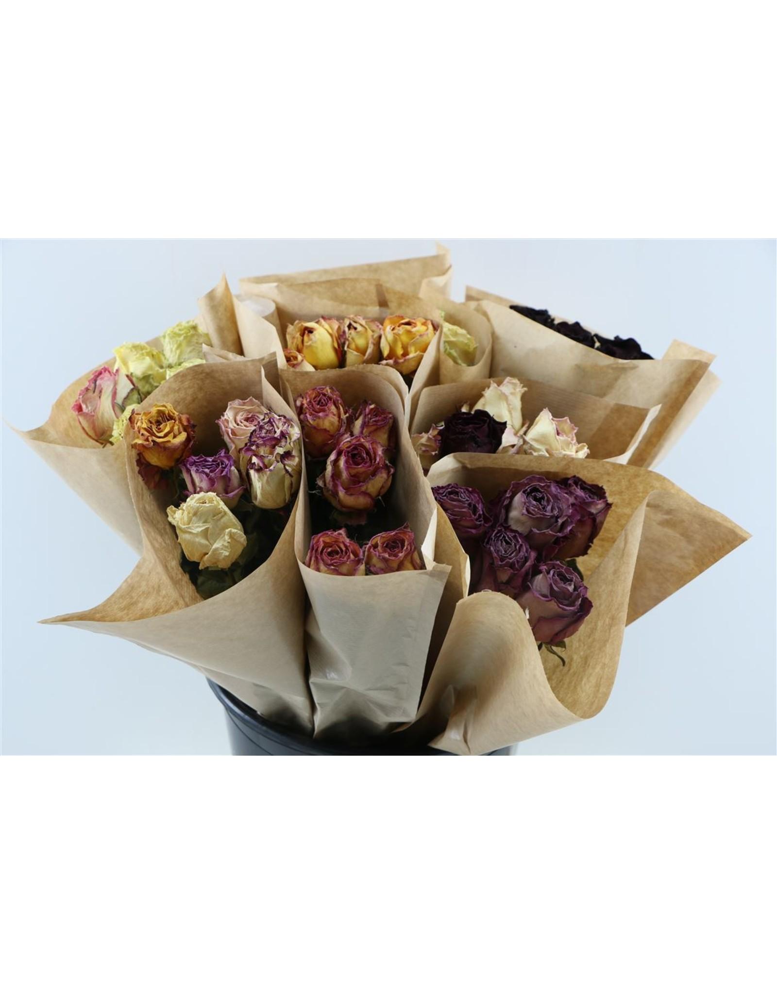 Dried Roses From Ecuador 5pcs 50cm Bunch x 20