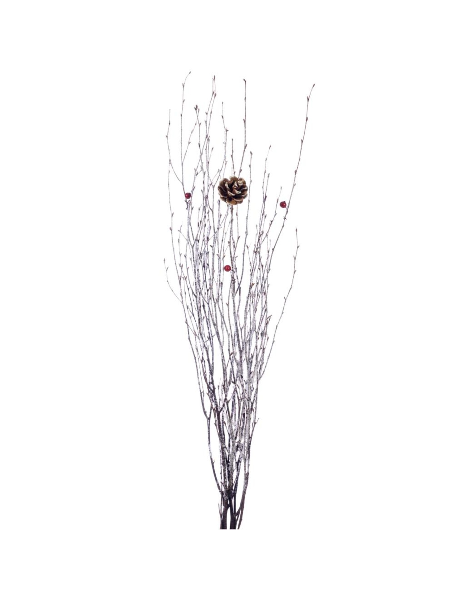 Display Birch 75cm with pine cone & berry white x 30