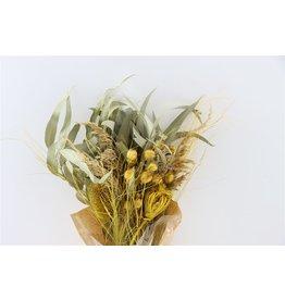 Dried Bouquet Saint Marcout Nr 30 x 1