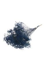 Broom bloom bunch SB dark blue x 5