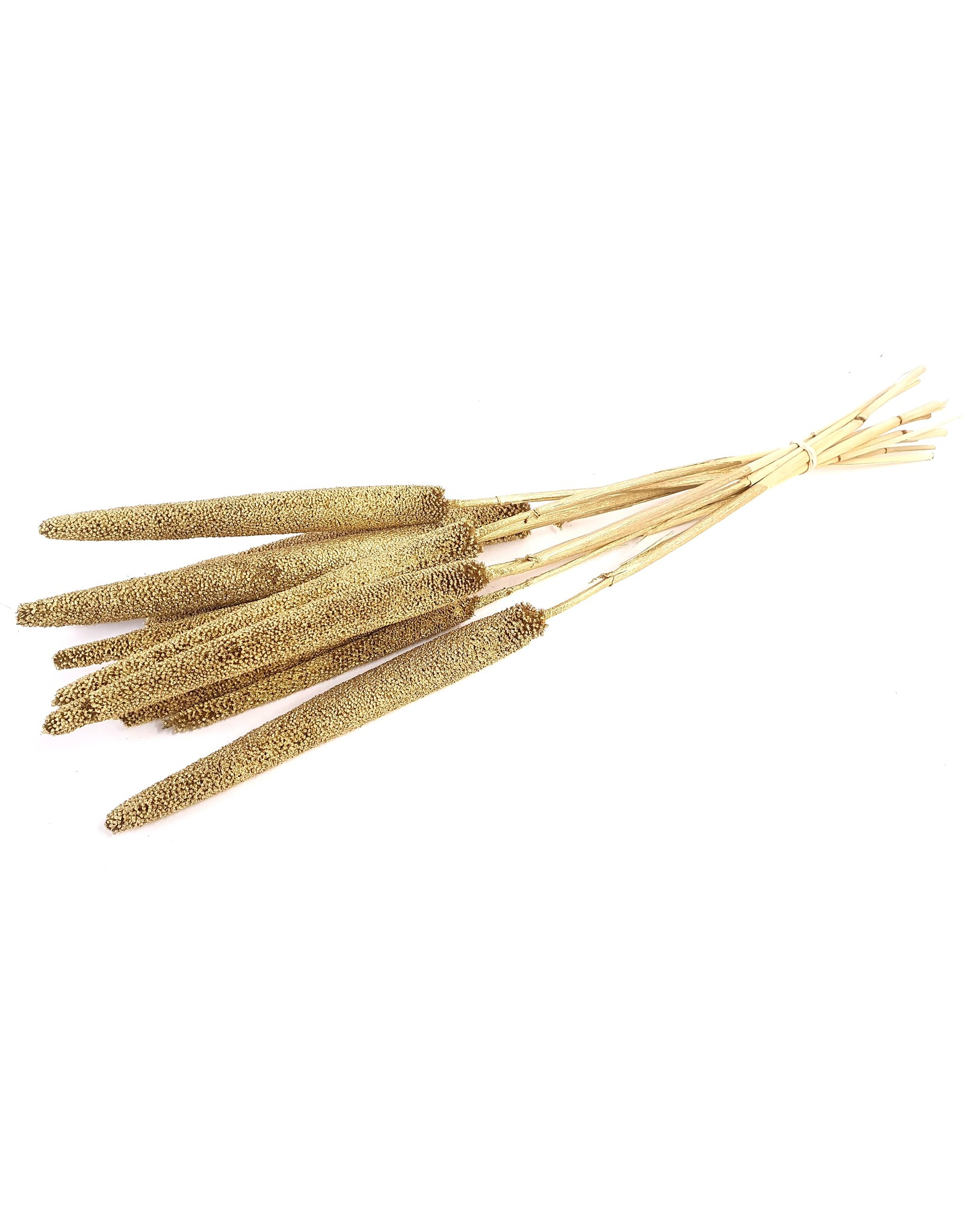 Babala on natural stem Gold x 100