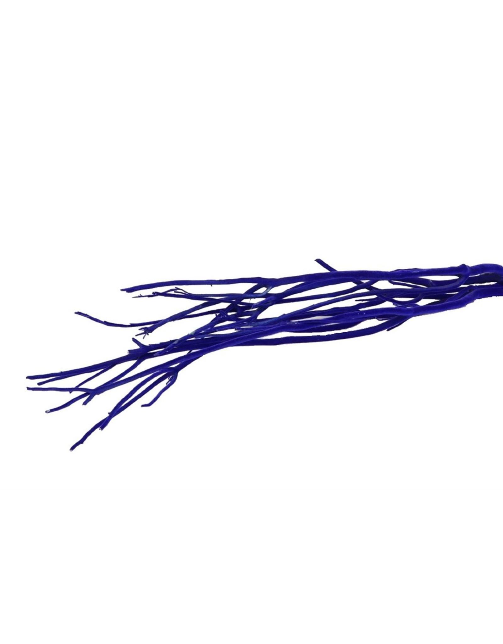 Mitsumata Fl. Blue 3pcs Bunch x 5