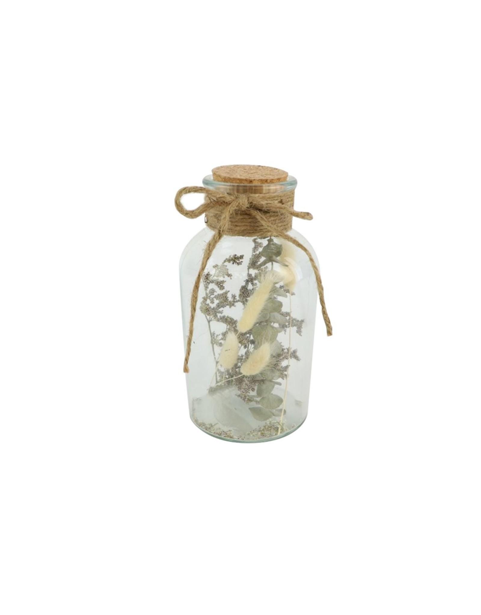Arr Bottle Dried Surprise D10.0h20 x 9