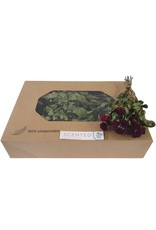 Dried scented roses 10pc per bunch Burgundy x 8