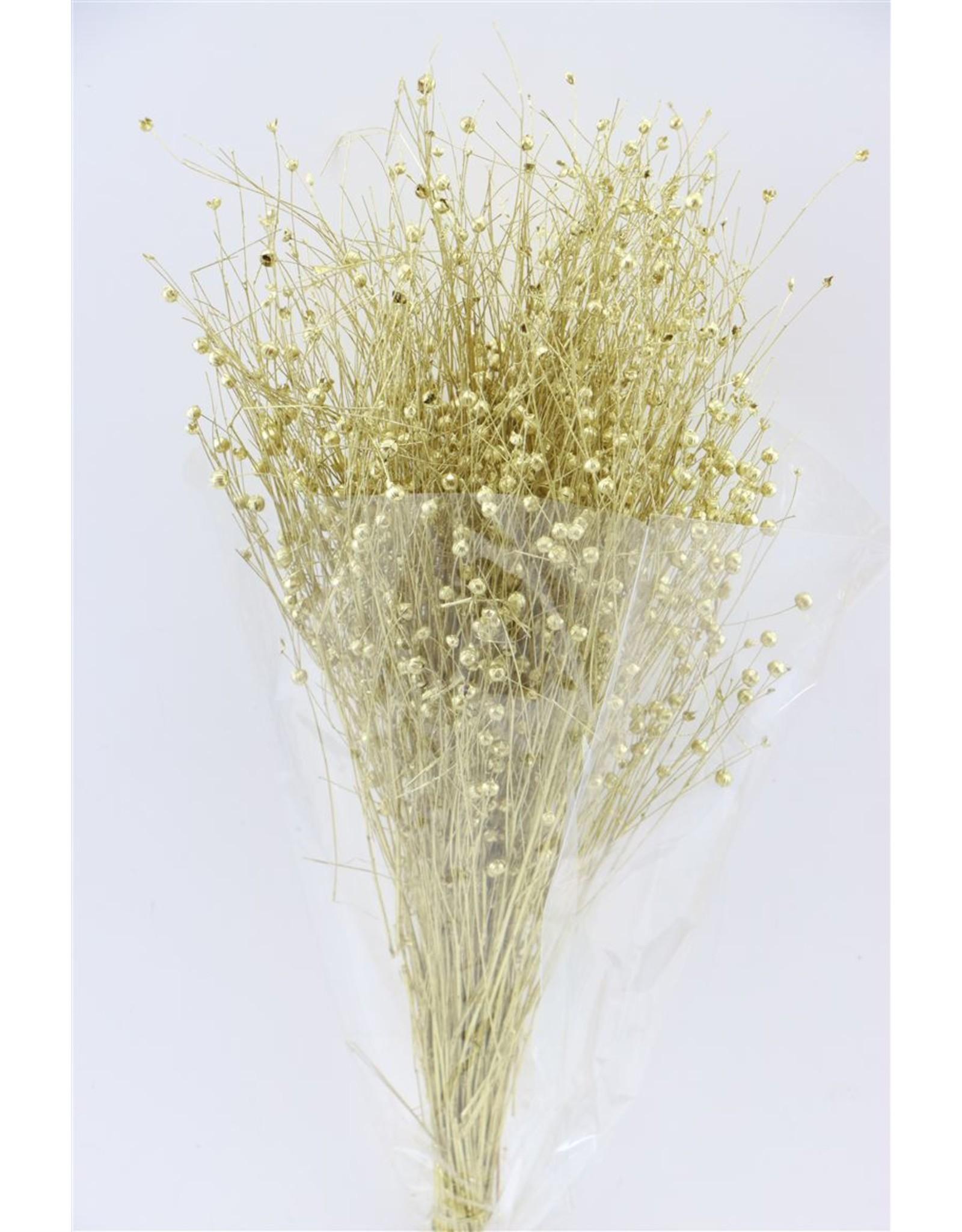 Dried Lino/vlas Goud Bunch x 5