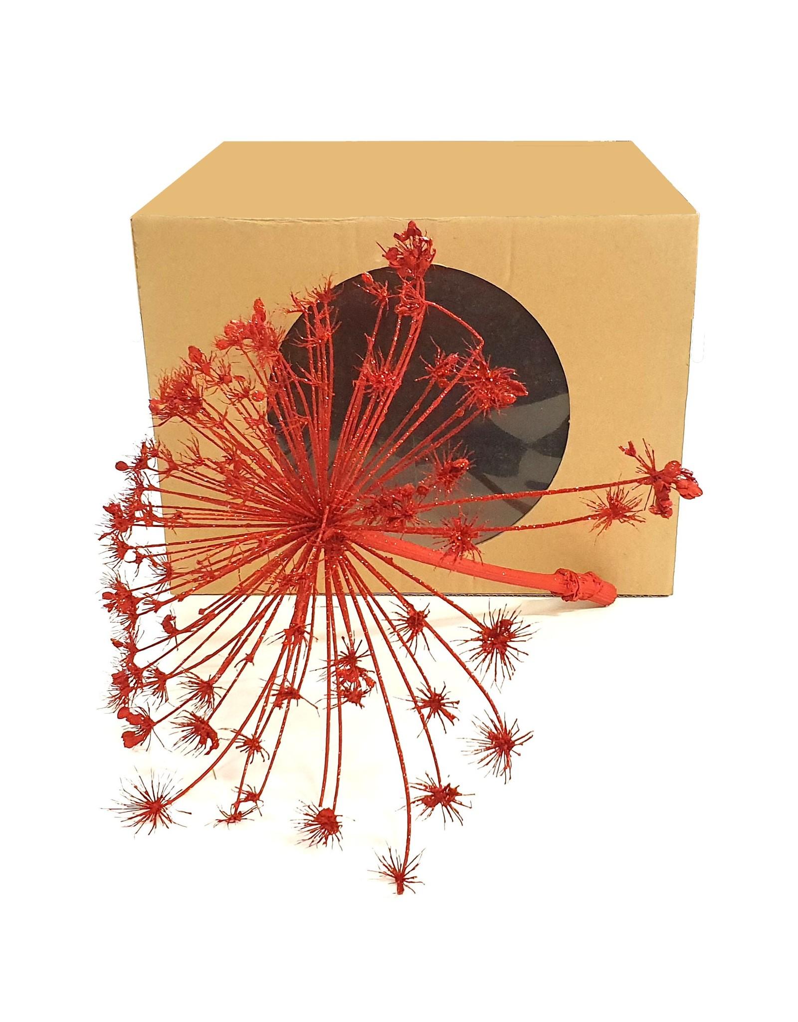 Heracleum head per pc 40cm in vensterbox Red + Glitter x 1