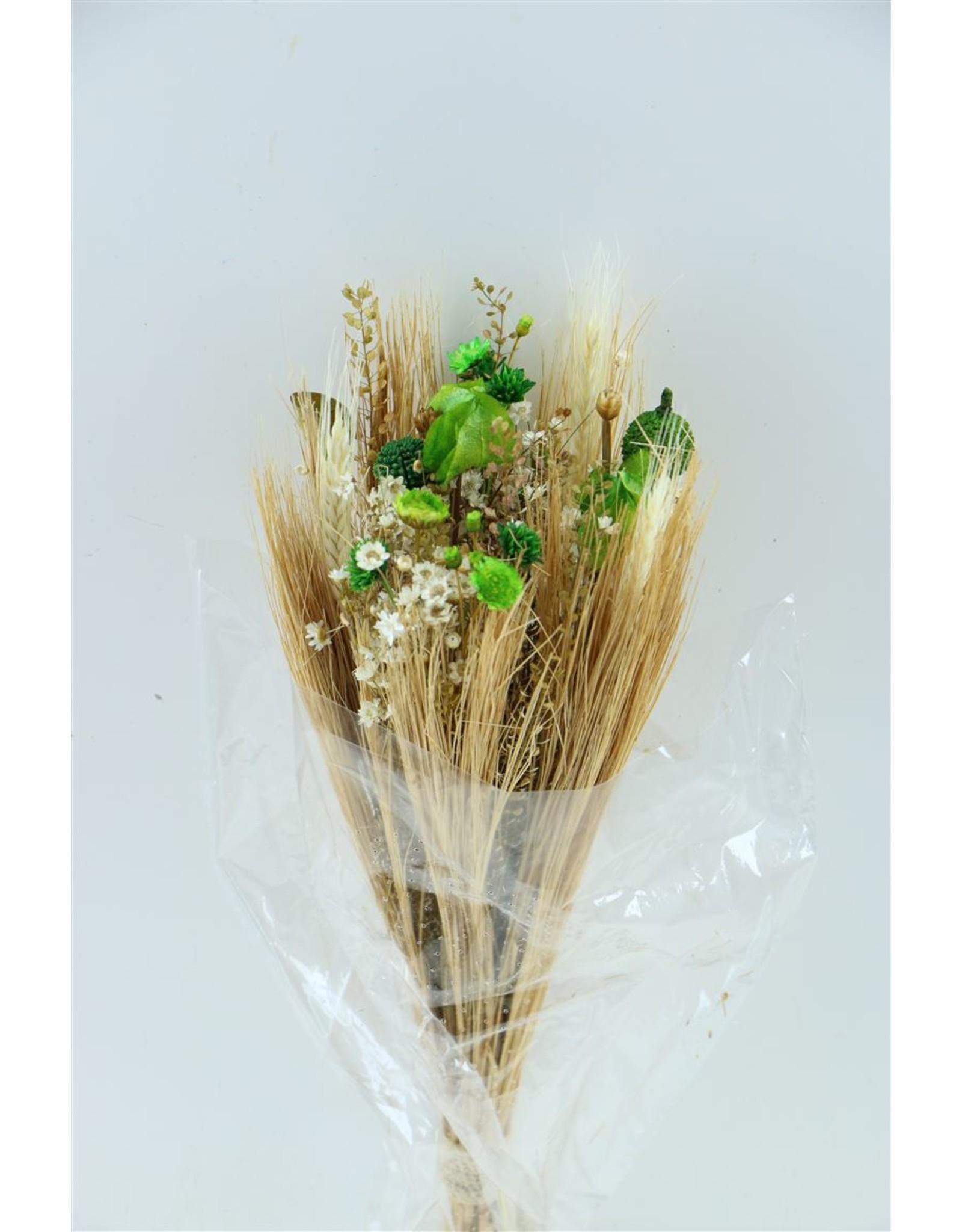 Dried Bouquet Fantasia Small Green x 2