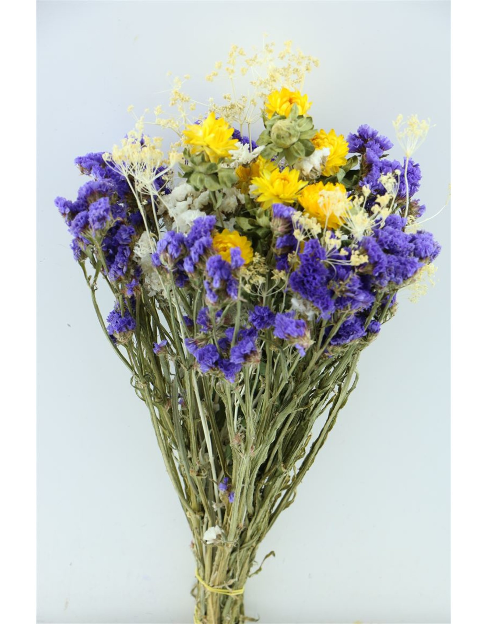 Dried Bouquet Mix Type 2 x 2