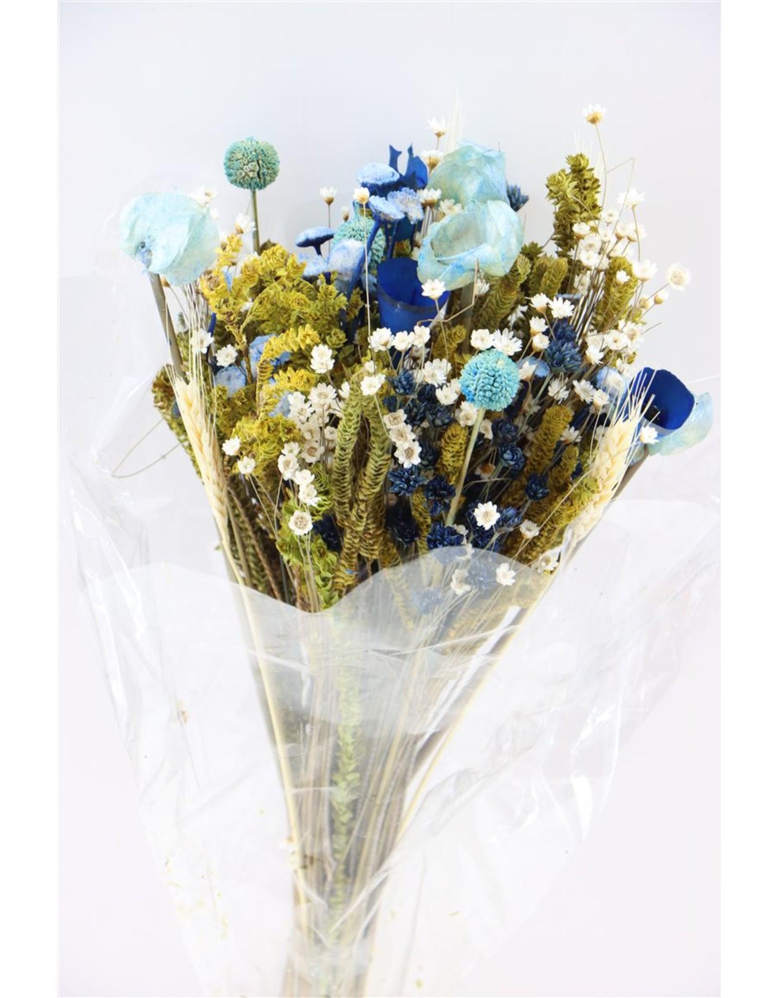 Dried Bouquet Fantasia Blue x 1
