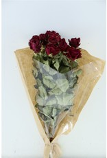 Dried Roses 40cm Burgundy 10pcs Bunch x 2